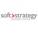 Soft Strategy Group